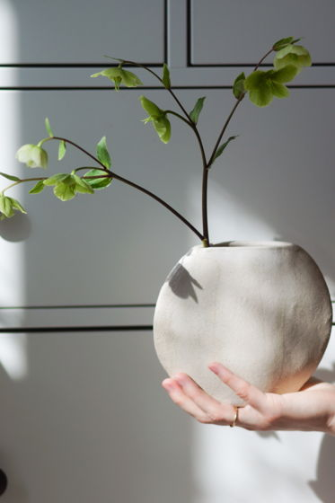 Плоская ваза для одного цветка