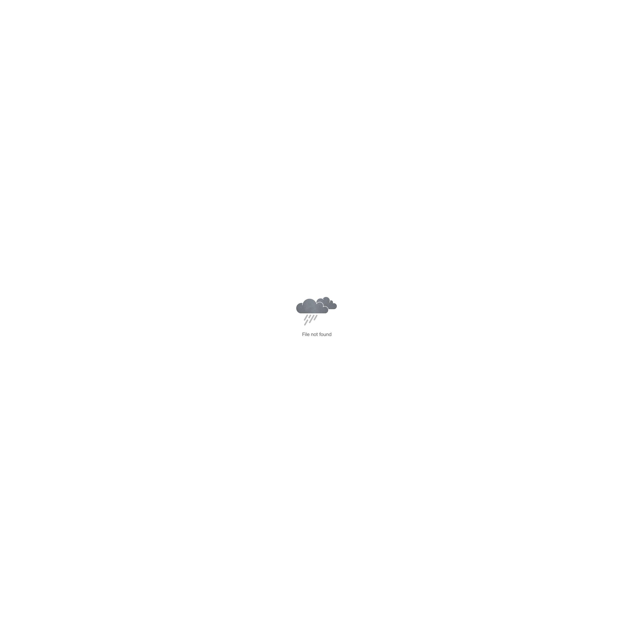 Авторская открытка с енотом, 10х15