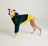 Толстовка для собак темно-зеленая с желтым TANKER BASE BOTTLE GREEN М44, М48 (спина - 42-50 см)