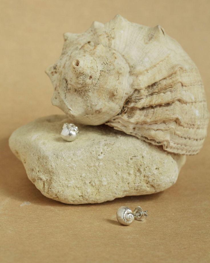 пусеты малышки - ракушки из серебра