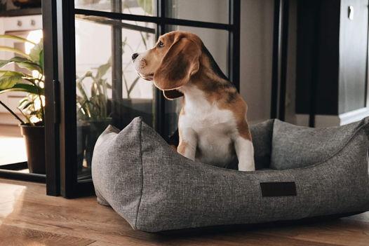 Маленькая лежанка Pet Bed S серая