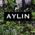 Aylin Stories
