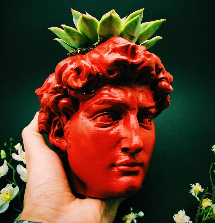 Кашпо Давид (красное)