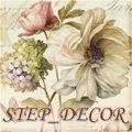 STEP_DECOR