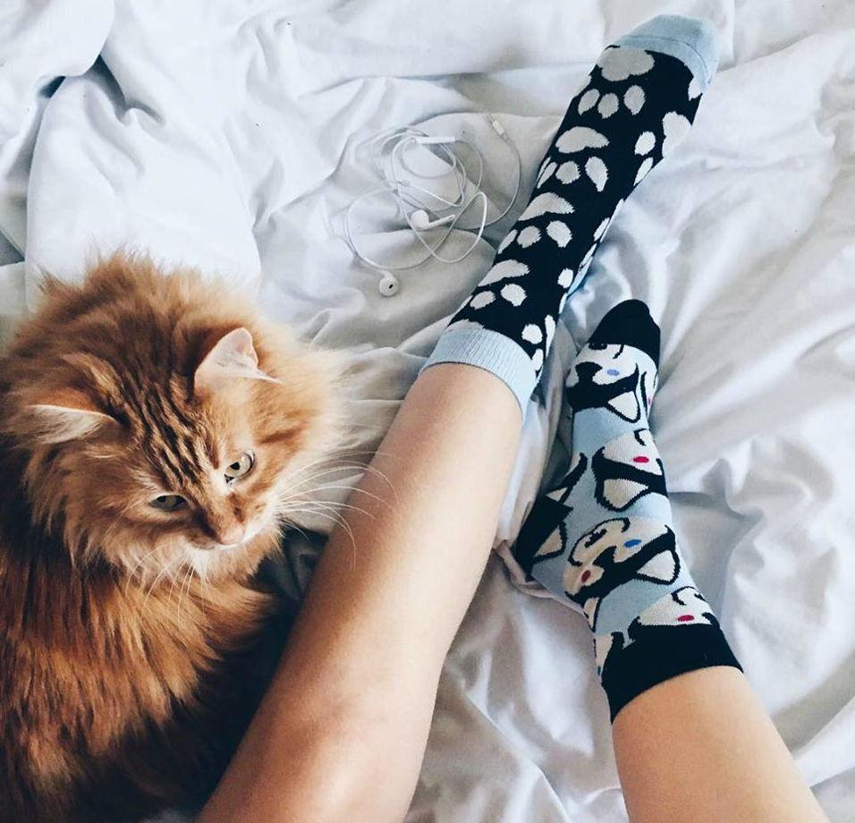Разнопарные носки с собачками Sammy Icon - Balto