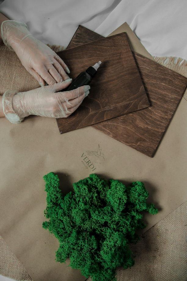 """Подарочный набор. Картина """"сделай сам"""" с использованием стабилизированного мха Ягель"""