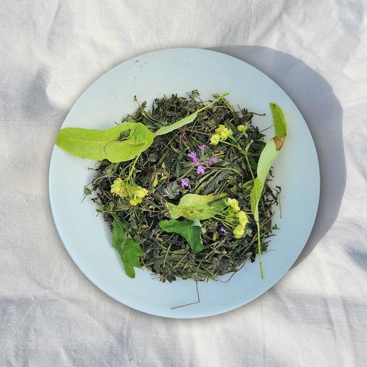 Чабрец зеленый (с липой и листьями лесных ягод)
