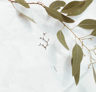 Серебряная брошь-булавка Веточка