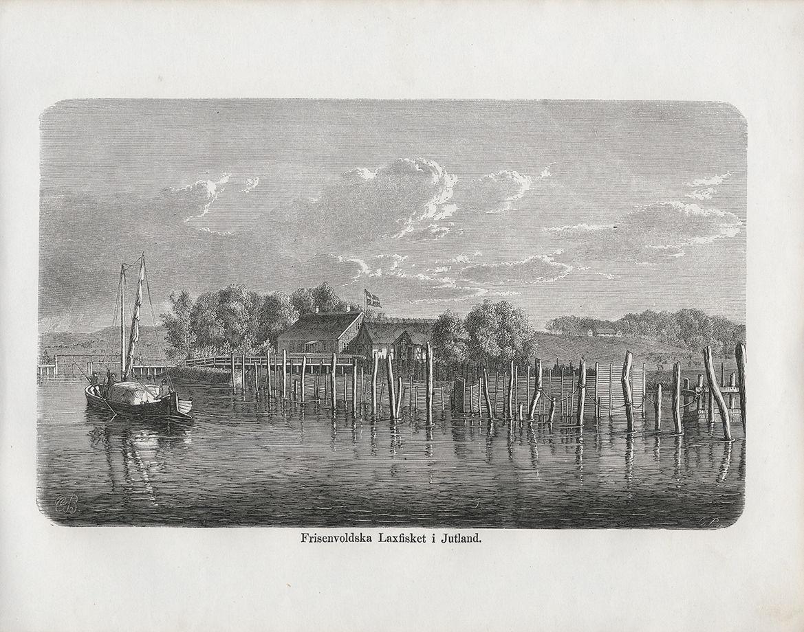 Шведская ксилография 1867 года на выбор