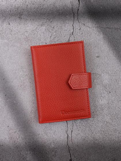 Обложка для автодокументов и паспорта Рыжий