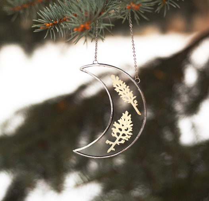 Лунное панно с гербарием | Зимняя серия