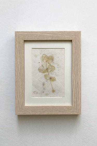 """Картина экопринт """"Eucalýptus 3"""""""