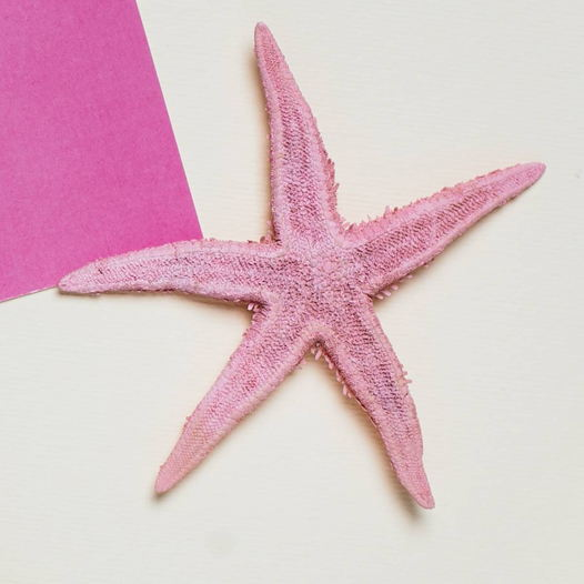 Магнитик с песочной звездой розового цвета