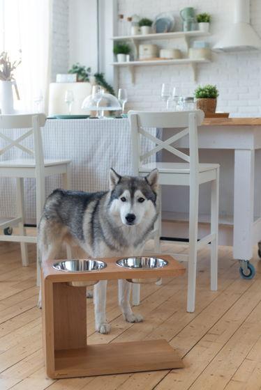 Дизайнерская подставка из натурального бука с мисками для крупных пород собак Vizor XL