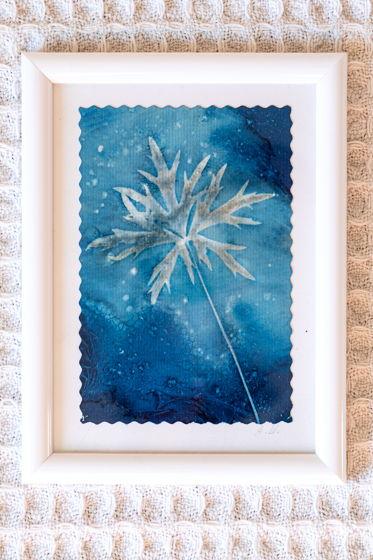 """Фотограмма """"Звезда в траве"""" в технике   wet cyanotype"""