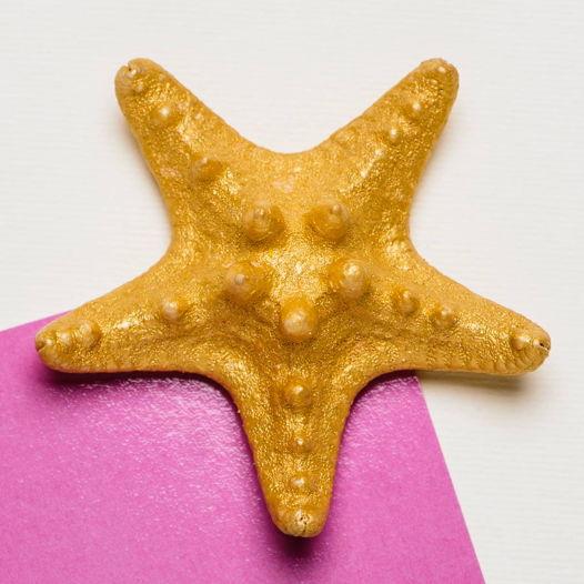 Магнитик с Рогатой Звездой золотистого цвета