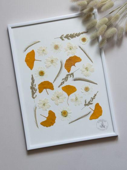 Домашний декор: гербарий из ромашек и гинко билоба