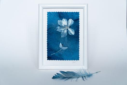 """Фотограмма """"Нежный клематис"""" в технике   wet cyanotype"""