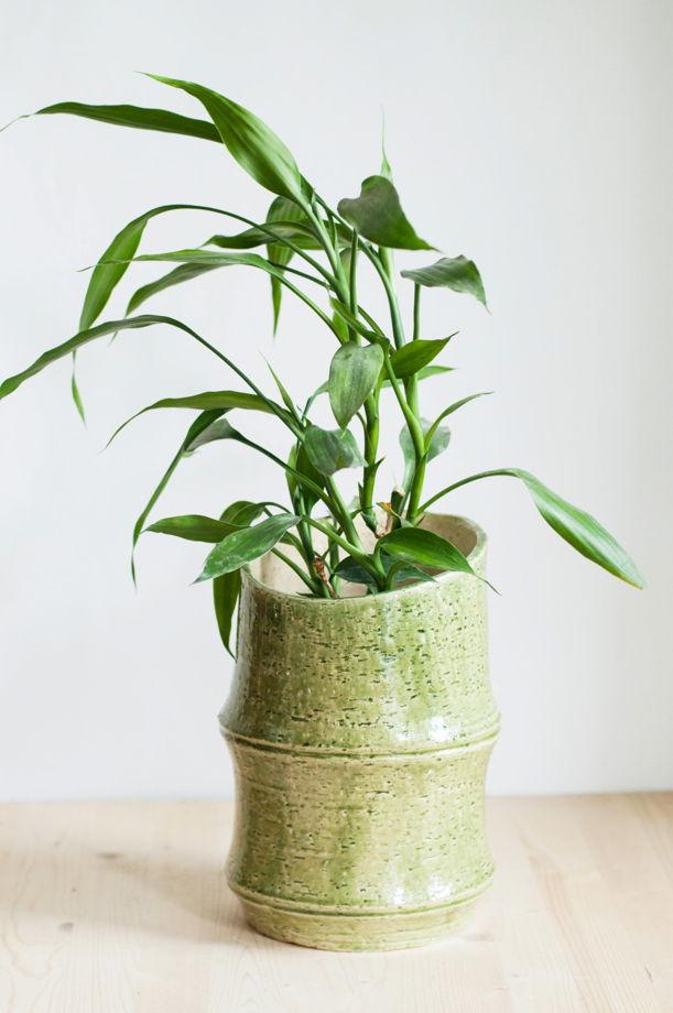 Большая керамическая ваза про бамбук