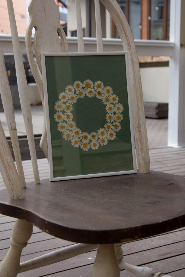 Домашний декор: гербарий ромашковое поле