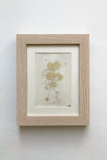"""Картина экопринт """"Eucalýptus 4"""""""