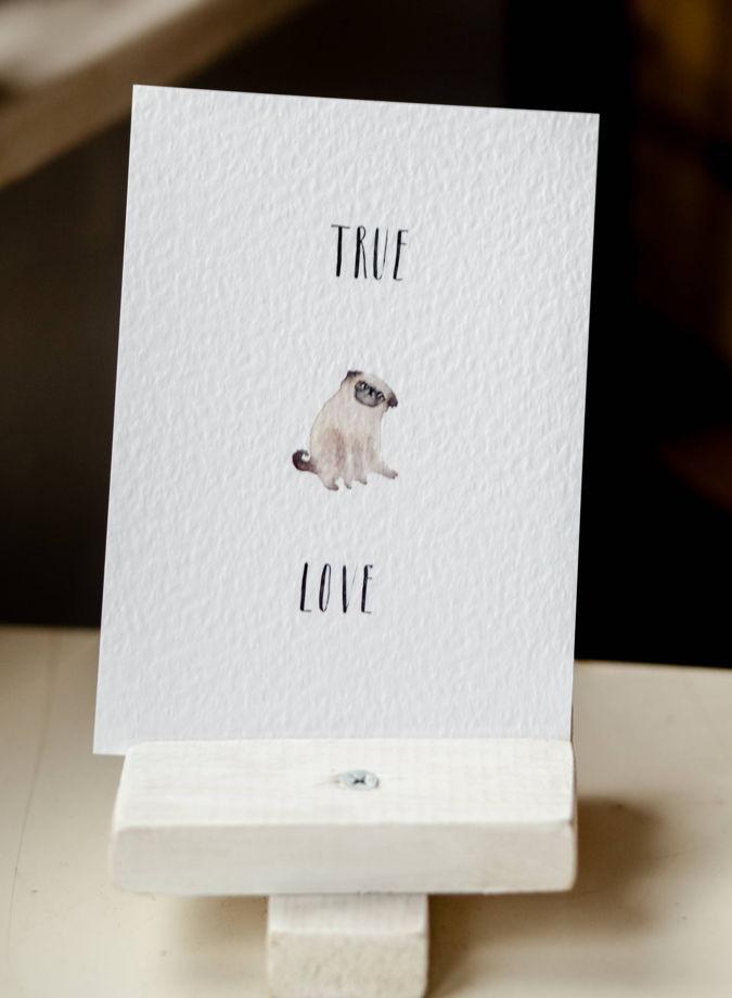 """Набор открыток с мопсами """"The Pug"""""""
