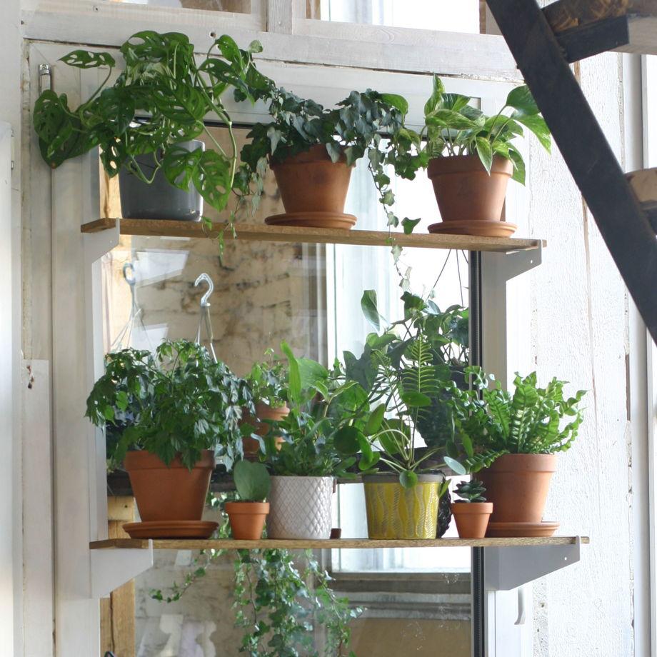 """Полка для растений """"Ботаника"""""""