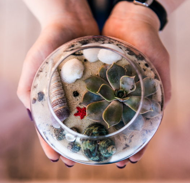 Флорариум шар малый