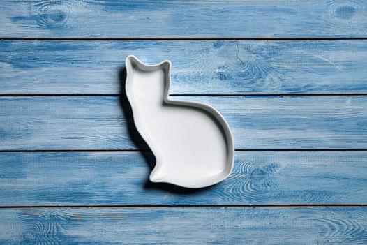 Кошечка из керамики