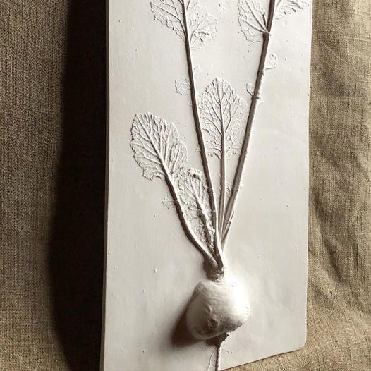 Ботанический барельеф «Репка»