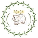 Ponchi Store