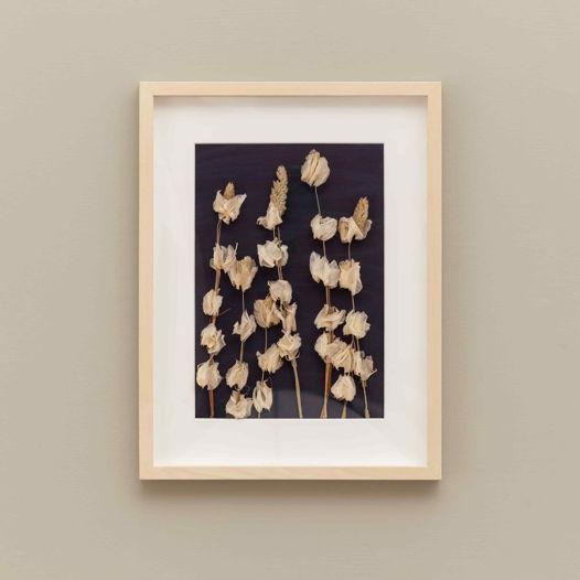 Панно с полевыми сухоцветами.