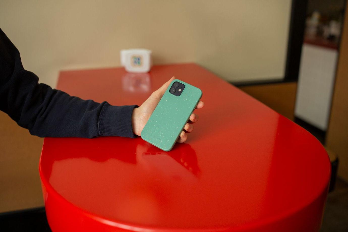 Биоразлагаемый чехол SOLOMA для iPhone XR Мята