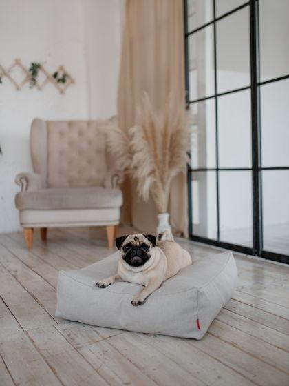 Лежанка-подушка COCCON |  60x60 | Жемчужный серый— PEARL GRAY