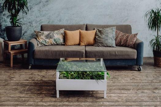 Журнальный столик с натуральными растениями