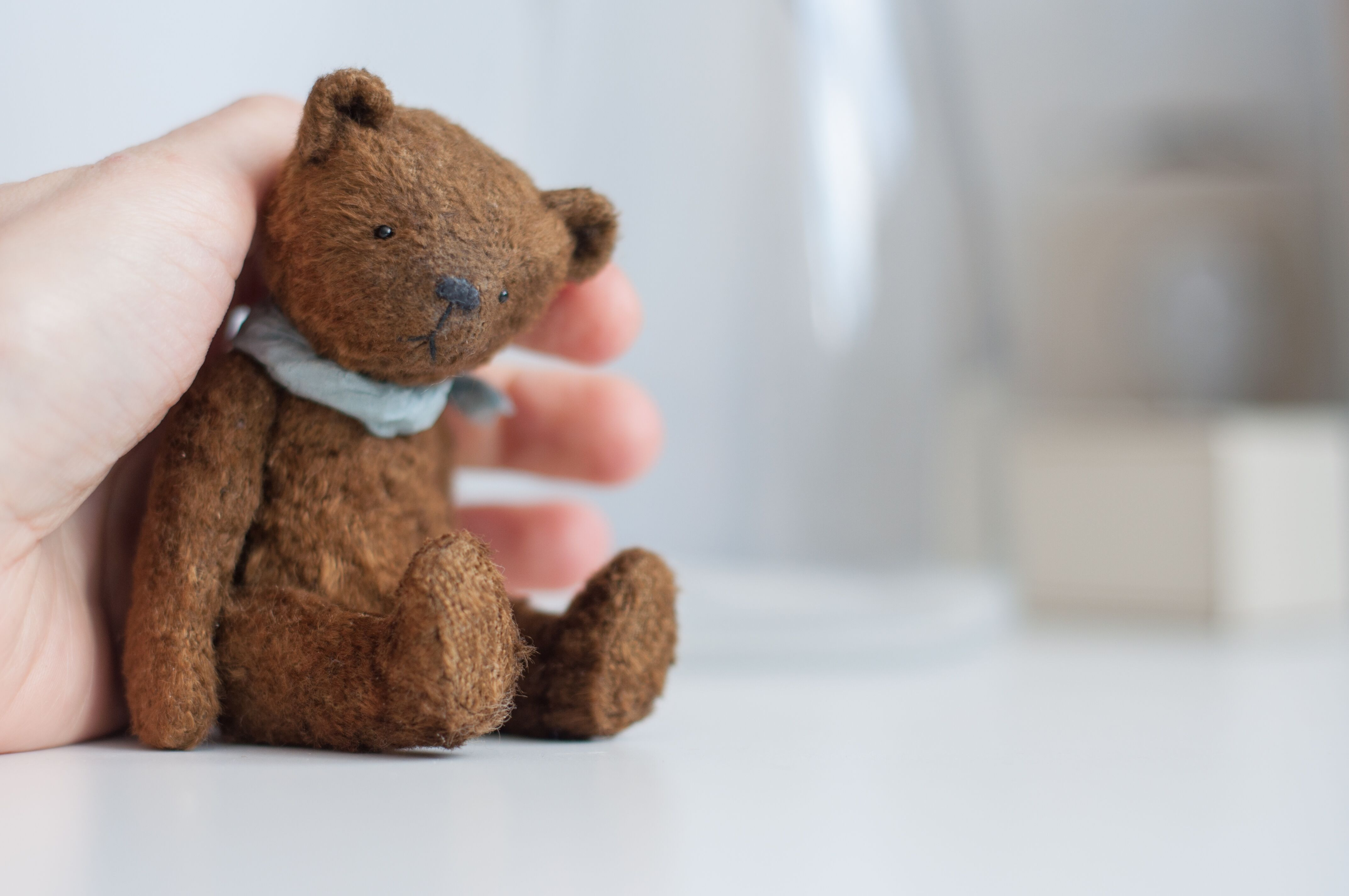 "Картинки по запросу ""мишка Тедди"""