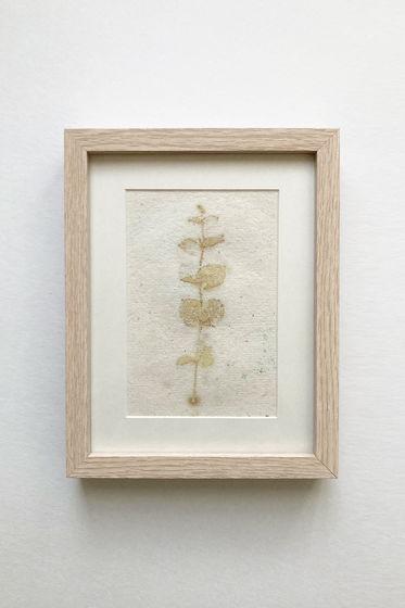 """Картина экопринт """"Eucalýptus 1"""""""